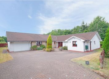 Thumbnail 6 bed detached bungalow for sale in 10 Drove Hill, Glasgow