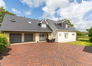Thumbnail 5 bed detached house for sale in Llangan, Bridgend