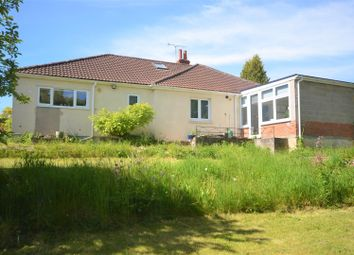 Thumbnail 4 bed detached bungalow for sale in Wellhead, Mere, Warminster