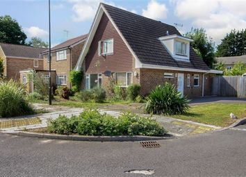 Thumbnail 3 bed detached house to rent in St. Catherines Road, Crawley