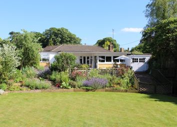 Thumbnail 4 bed detached bungalow for sale in Jacklyns Lane, Alresford