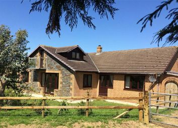 Thumbnail 5 bed bungalow for sale in Cefnllwyd, Aberystwyth, Ceredigion