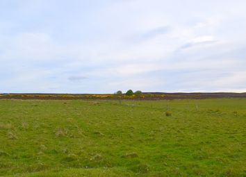 Thumbnail Land for sale in Dunbeath, Caithness
