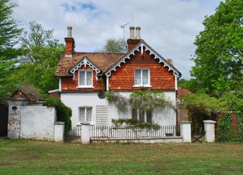 Thumbnail 3 bed detached house to rent in Lyndhurst, Hampshire