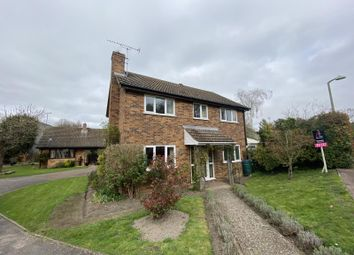 Thumbnail 3 bed detached house to rent in New River Green, Exning