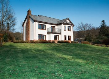 Thumbnail 4 bed detached house for sale in Sandyhills, Dalbeattie, Kirkcudbrightshire