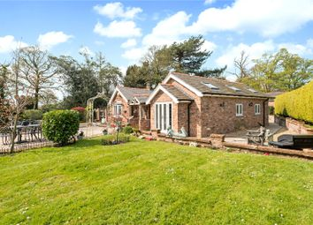 Thumbnail 4 bed detached bungalow for sale in Cobblers Cross Road, Tarporley, Cheshire