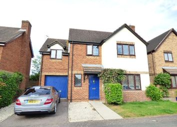 Thumbnail 4 bed detached house for sale in Wilstead, Beds