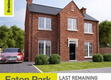 Thumbnail 3 bedroom detached house for sale in The Cutts, Derriaghy