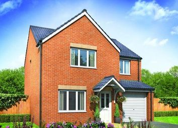 Thumbnail 4 bedroom detached house for sale in Plot 126 Roseberry, Hampton Gardens, Peterborough