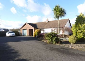 Thumbnail 3 bed detached bungalow for sale in Llechryd, Cardigan