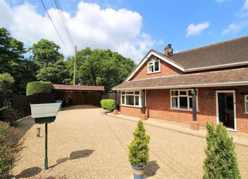 Thumbnail 3 bed bungalow to rent in Brickhouse Hill, Eversley, Hook