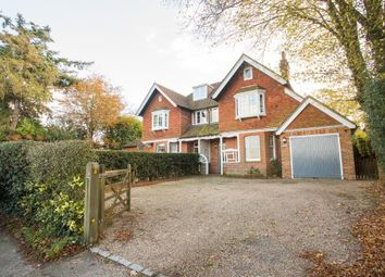 Thumbnail 3 bed semi-detached house to rent in Burwash Road, Burwash, East Sussex
