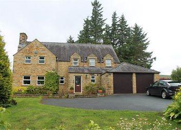 Thumbnail 4 bedroom detached house to rent in Park Fell House, Park Lane, Alston