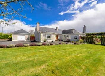 Thumbnail 3 bed detached house for sale in Ivy House, Gaynorstown Lane, Old Road, Monasterboice, Louth