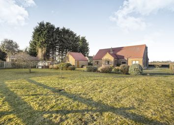 3 bed detached bungalow for sale in Hilgay Road, West Dereham, King's Lynn PE33