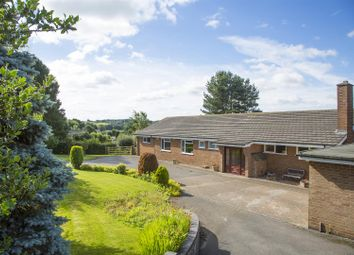 Thumbnail 3 bed detached bungalow for sale in Wood Lane, Horsley Woodhouse, Derbyshire