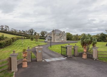 Thumbnail 6 bed detached house for sale in Castlerainey Road, Crossgar