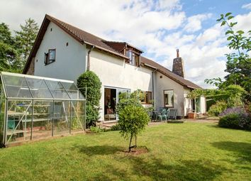 Thumbnail 5 bed detached bungalow for sale in Shillingford Abbot, Exeter