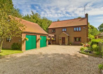 Thumbnail 4 bed detached house for sale in Back Lane, Castle Acre, King's Lynn