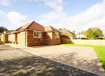Thumbnail 2 bed detached bungalow for sale in Gurney Close, Broad Oak, East Sussex