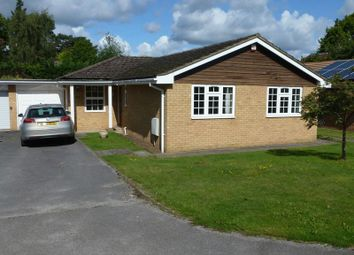 Thumbnail 3 bed bungalow for sale in Pine Dean, Bookham, Leatherhead