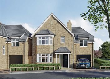 Thumbnail 4 bed detached house for sale in Malvern Place, Stevenage, Hertfordshire