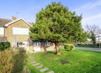 Thumbnail 4 bed semi-detached house for sale in Lodge Road, Writtle, Chelmsford