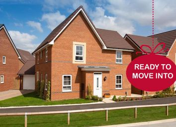 """Thumbnail 4 bed detached house for sale in """"Alderney"""" at Morgan Drive, Whitworth, Spennymoor"""