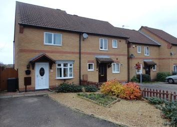 Thumbnail 2 bed semi-detached house to rent in Pine Close, Loughborough