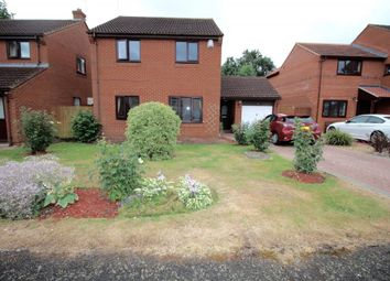 Thumbnail 4 bedroom detached house to rent in Leafields, Little Billing, Northampton