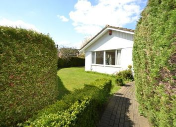 Thumbnail 3 bed bungalow to rent in Carleton Close, Esher