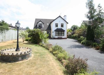 Thumbnail 4 bed detached house for sale in Rathfriland Road, Dromara, Down