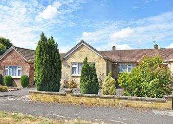 Thumbnail 2 bed semi-detached bungalow for sale in Grangefields Road, Guildford