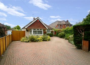 Thumbnail 3 bed detached bungalow for sale in Old Wokingham Road, Crowthorne, Berkshire