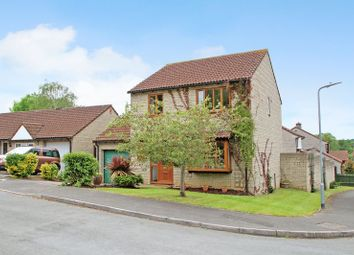 Thumbnail 4 bed detached house for sale in Holm Oaks, Butleigh, Glastonbury