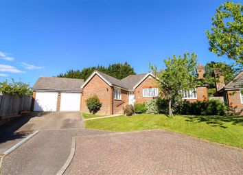 Thumbnail 3 bed detached bungalow for sale in Rushmere Rise, St. Leonards-On-Sea, East Sussex