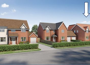 Thumbnail 4 bed detached house for sale in Acton, Sudbury, Suffolk