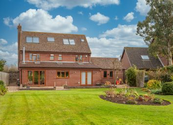 Thumbnail 6 bed detached house for sale in Top Common, Spooner Row, Wymondham