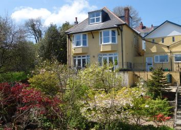 Thumbnail 4 bed detached house for sale in Stepney Road, Llandeilo