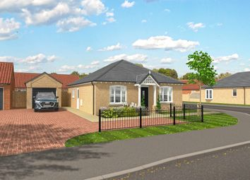 Thumbnail 2 bed detached bungalow for sale in Repps Road, Martham, Great Yarmouth