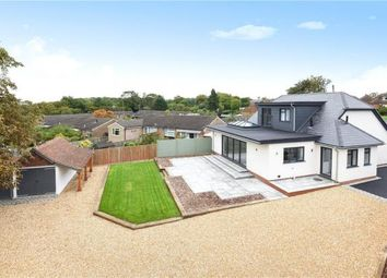 Thumbnail 4 bed detached bungalow for sale in Christmas Pie Avenue, Normandy, Guildford