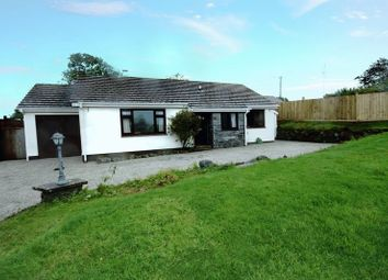 Thumbnail 3 bed bungalow for sale in The Square, Petrockstow, Okehampton