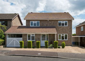 Thumbnail 4 bed detached house for sale in Chestnut Hill, Norwich, Norfolk
