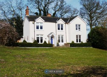 Thumbnail 5 bed detached house to rent in Sloe Hill, Halstead