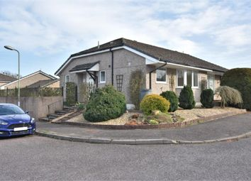 Thumbnail Semi-detached bungalow to rent in Potters Stile, Dunkeswell, Honiton, Devon
