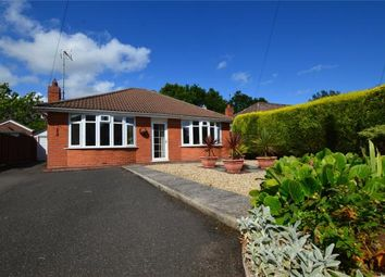 Thumbnail 2 bed detached bungalow for sale in Hoveland Lane, Taunton, Somerset