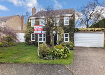 Thumbnail 4 bed detached house for sale in Meadow View, Eltisley, St. Neots, Cambridgeshire