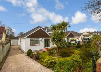 Thumbnail 3 bed semi-detached bungalow for sale in Twickenham Road, Newton Abbot