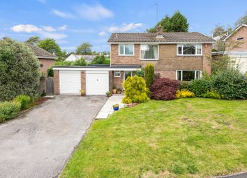 Thumbnail 4 bed detached house for sale in Ploughman Way, Yealmpton, Plymouth